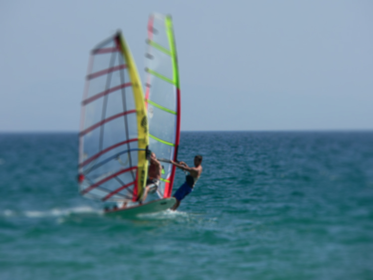 windsurf_ftrd img