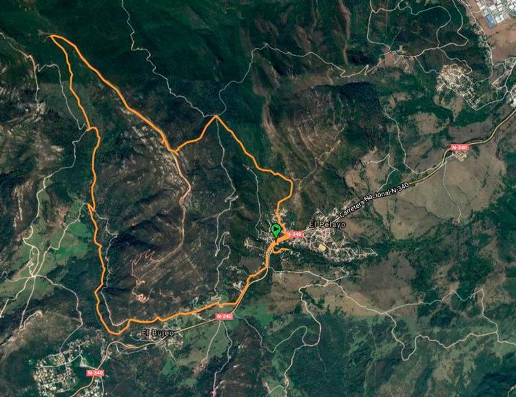 ruta_sendero_bosque_niebla
