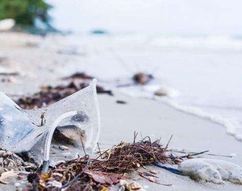 consejos cuidar océanos