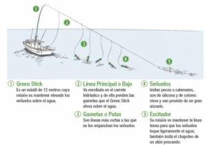 green stick pesca ilustracion